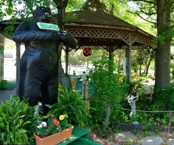 Maggie's Jungle Golf Gilbertsville