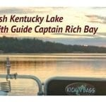 Your June Kentucky Lake Fishing Report from Kick'n'Bass